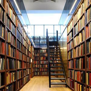 Библиотеки Андреаполя