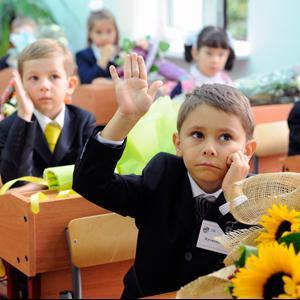 Школы Андреаполя